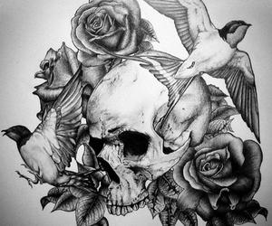 skull, bird, and rose image