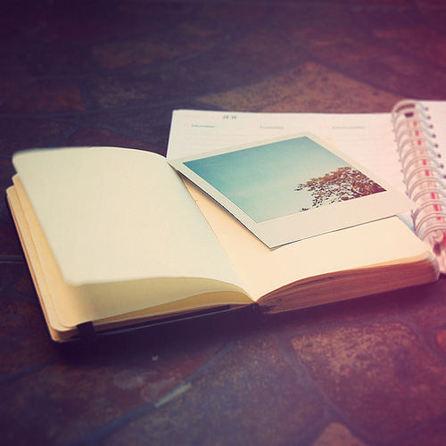 notebook and polaroid image