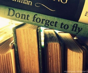 book, fly, and quotes image