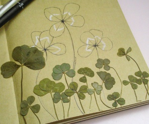 clovers, drawing, and lucky image