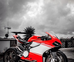 ducati, motorcycle, and racing image