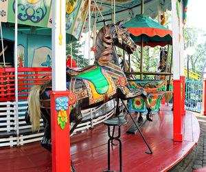 amusement park, blogger, and colors image