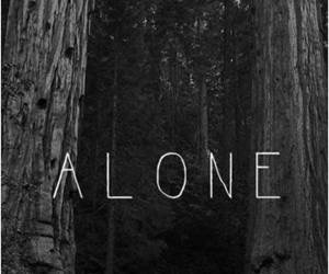 alone, dark, and forest image