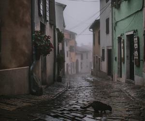 rain, street, and village image