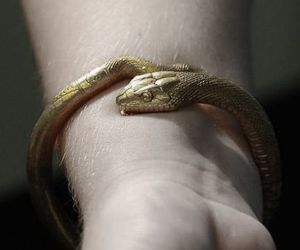 snake, bracelet, and gold image