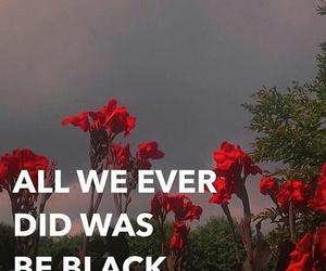 blm, black lives matter, and all lives dont matter image