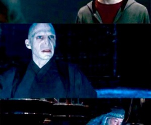 dumbledore, funny, and harrypotter image