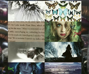 Alyssa, wonderland, and splintered image