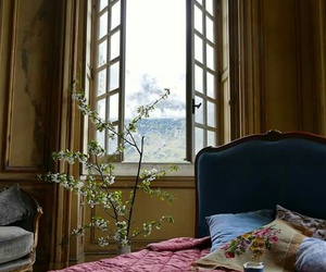 nature and window image