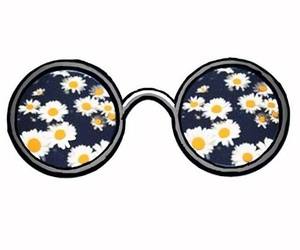 flowers, overlay, and glasses image
