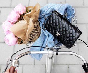 bike, bag, and flowers image