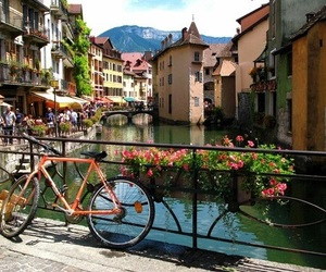 bike, france, and flowers image