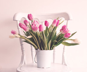 etsy, flower photography, and flowers image