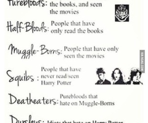 fun, funny, and potter image