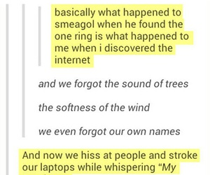 funny, the lord of the rings, and tumblr image