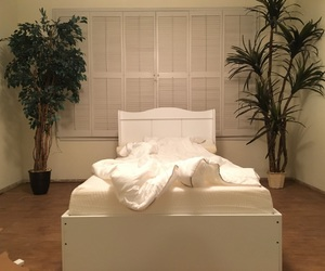 bed, bedroom, and trees image