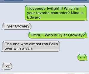 funny, text, and twilight image
