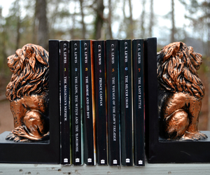 book, books, and the chronicles of narnia image