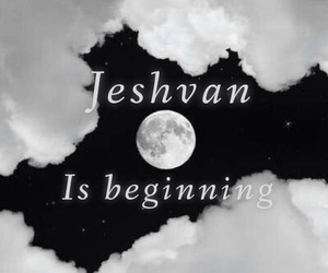 jeshvan, angel, and hush hush image