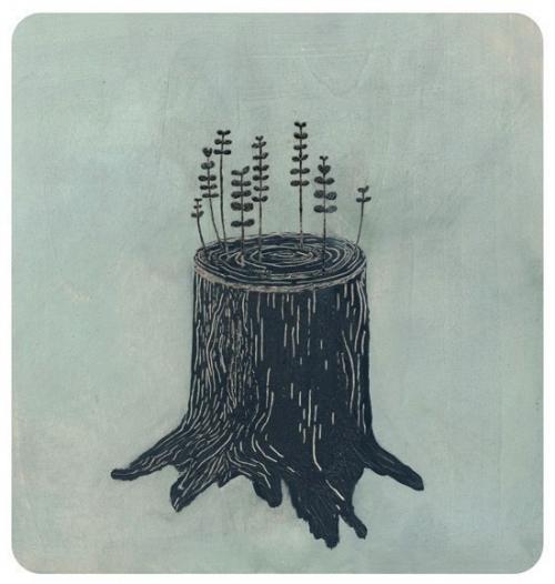 nature, tree, and stump image
