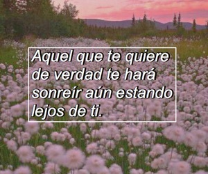 flores, flowers, and frases image