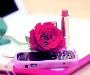 pink, rose, and lipstick image