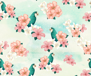 background, bird, and flower image
