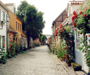 architecture, denmark, and europe image