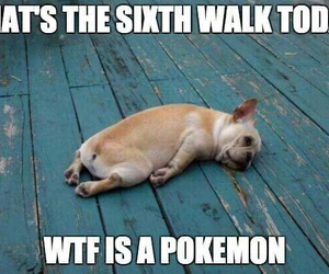 funny, pokemon, and quotes image