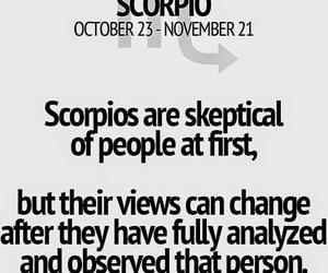 horoscope, scorpio, and zodiacs image
