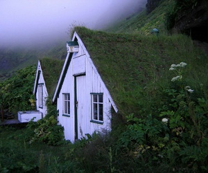 house, nature, and green image