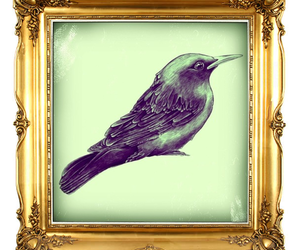 gold, bird, and frame image
