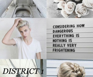 aesthetic, district 1, and the hunger games image