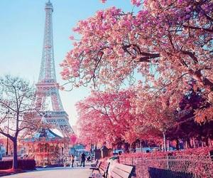 paris, pink, and travel image