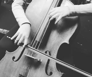 cello, black, and instrument image