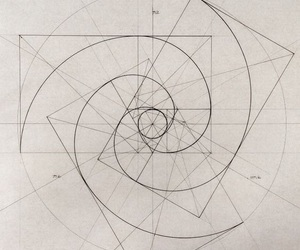 art, fibonacci, and science image