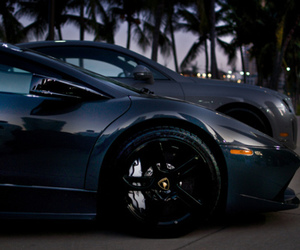 car, luxury, and palms image