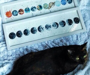 cat, art, and indie image