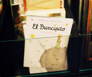book and el principito image