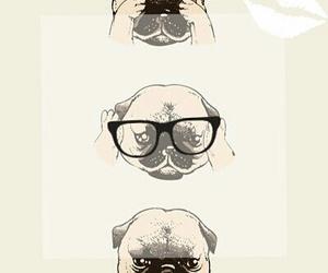 dog cute kawaiii hermoso image