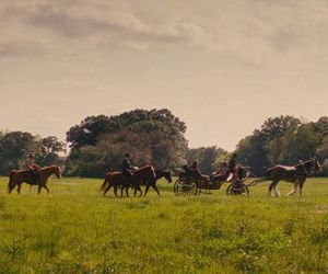 cinematography and django unchained image