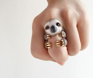 cool, sloth, and pretty image