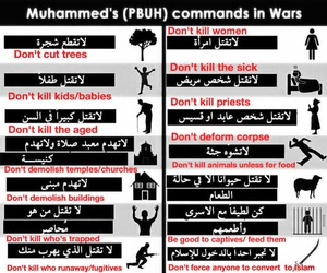 islam, war, and victims image