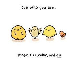 quotes, color, and shape image