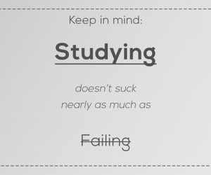 quote, studying, and life image