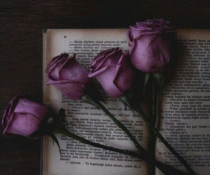 Image by Fulla Flowar