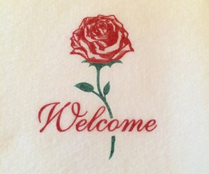 rose, red, and theme image