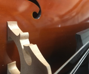 cello, elegance, and music image
