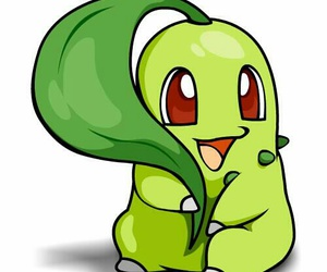 pokemon and chikorita image