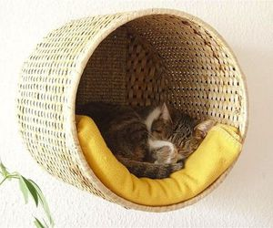 Your cat will love this IKEA hack.: